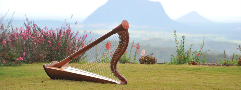 harp tuition sunshine coast